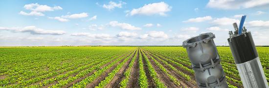 La saison a commencé ... l'irrigation est assurée avec les produits F.B. Submersible Motors!