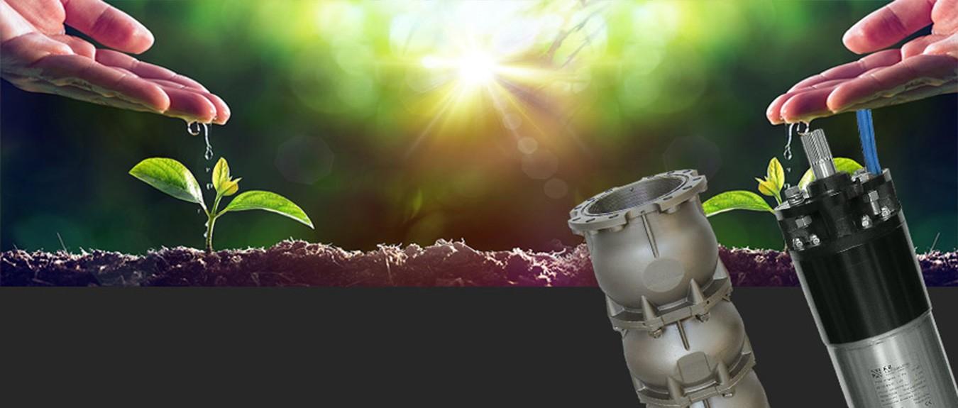 L'acqua, la nostra passione