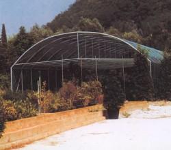 Tunnels utilizzato come ombraio
