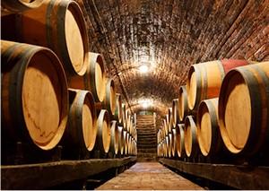 Settore vinicolo