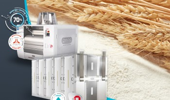 Durum wheat and grinding diagrams: the 4 factors that influence the grinding process