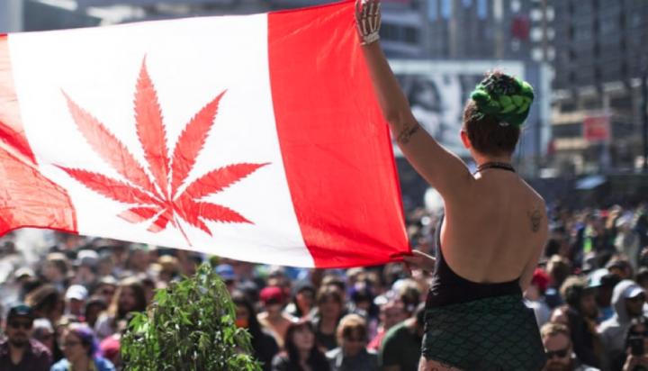 Il Canada ha approvato la legalizzazione della Cannabis ad uso ricreativo
